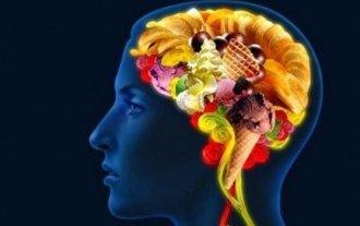 food-brain